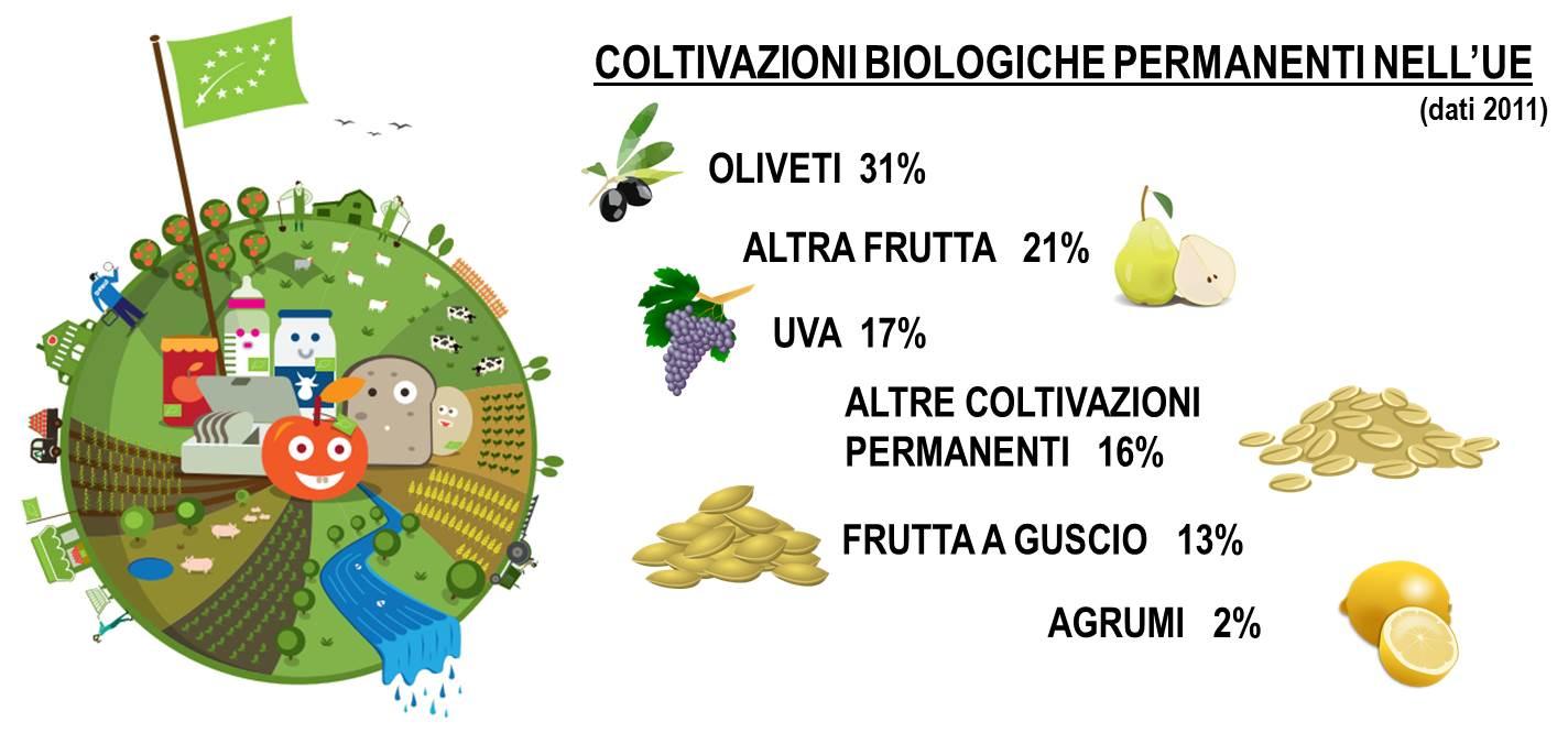Bio UE 3 e percentuali