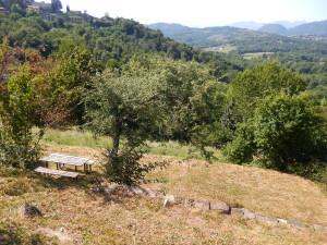Area_parco
